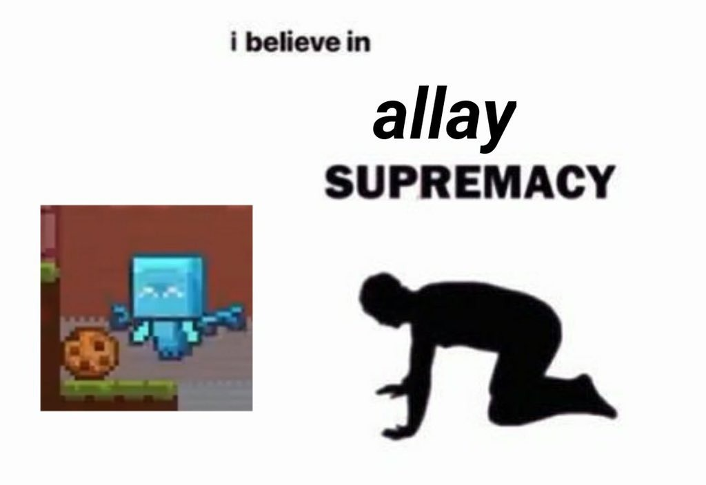 Allay supremacy - meme