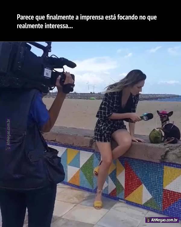 O dia que a programação for inteiramente de animais dando entrevistas, aí sim teremos entretenimento de verdade.  Os cachorros de óculos merecem mais destaque na sociedade, afinal são eles que movimentam a economia. - meme