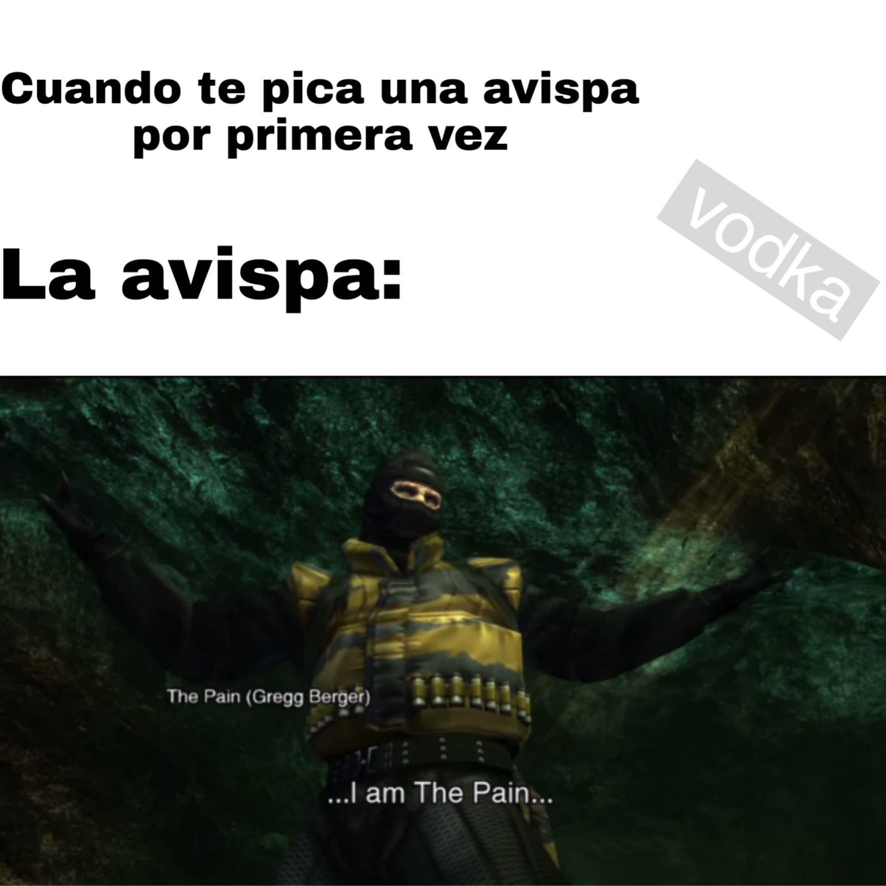 Meme de mgs3 (Esta vez The Pain)