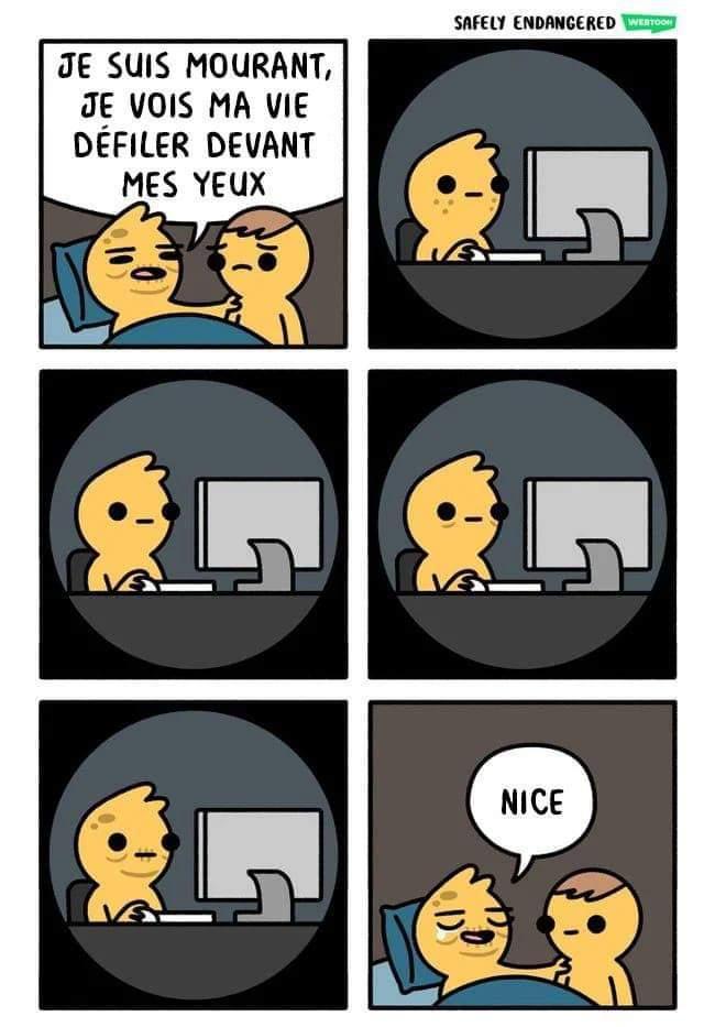 Toujours présent - meme