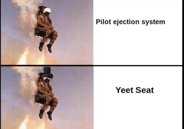 *yeet noises intensifies* - meme