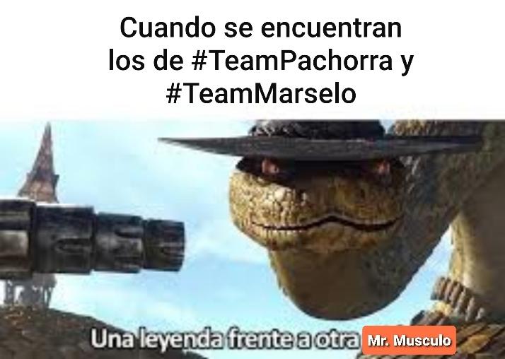 #TeamPachorra - meme