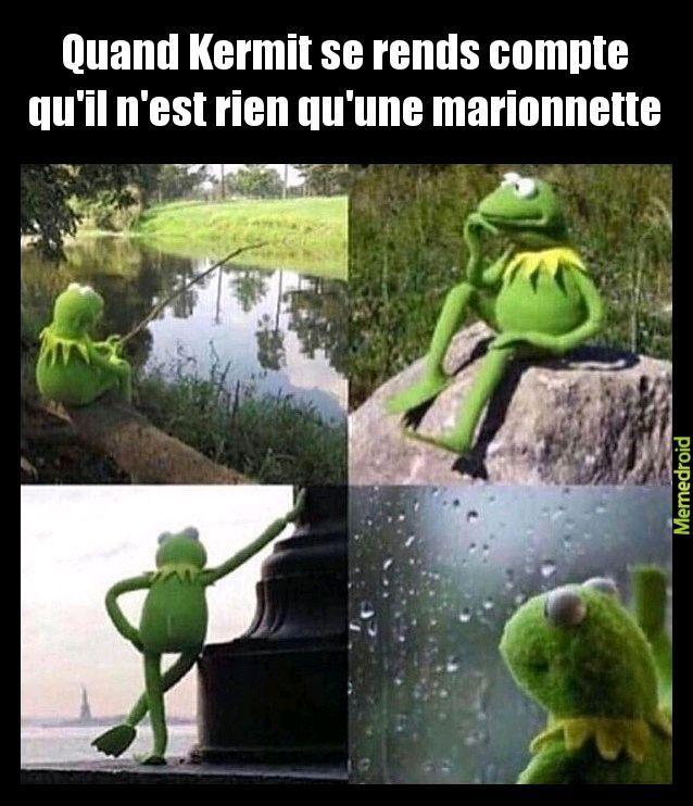 Pauvre Kermit - meme
