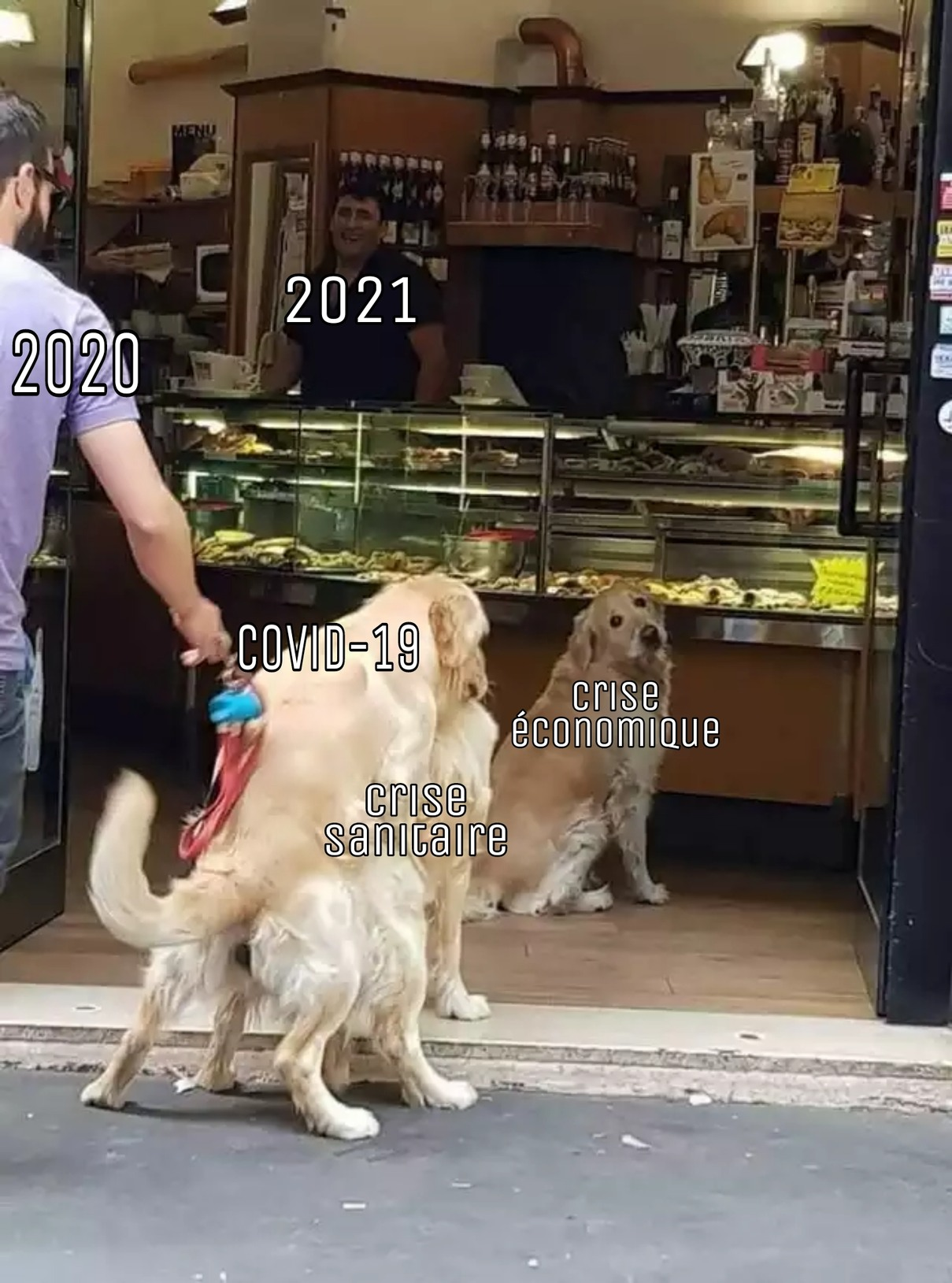 La vie est une chienne - meme