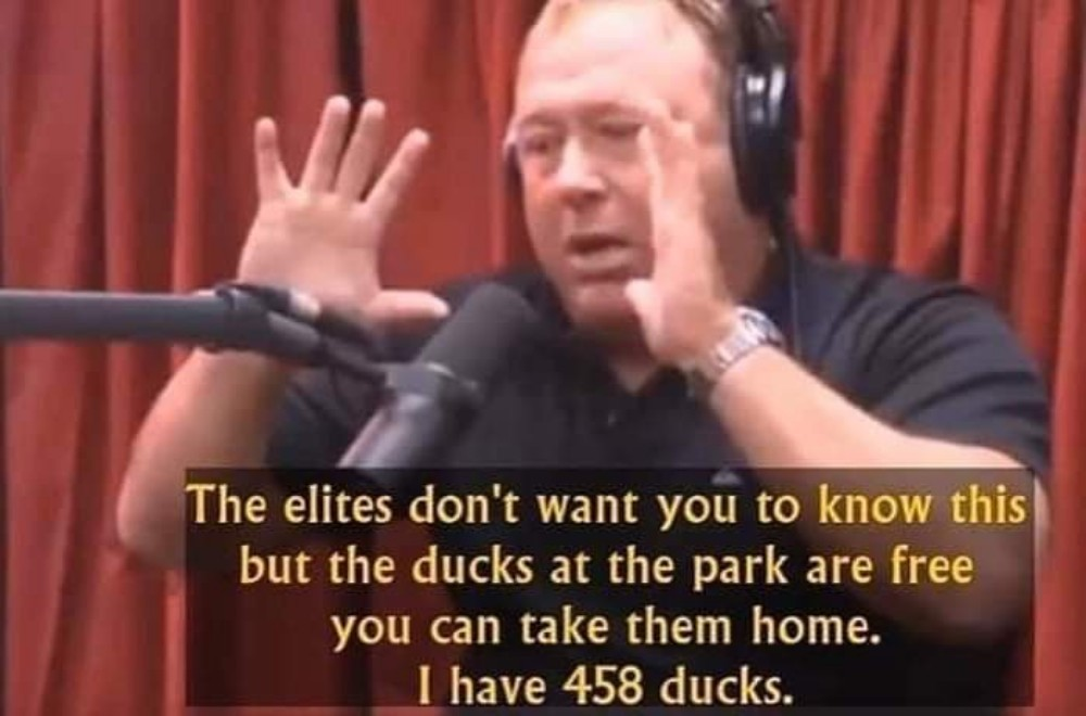dongs in an alex - meme
