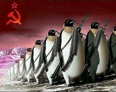 Pingüinos comunistas - meme