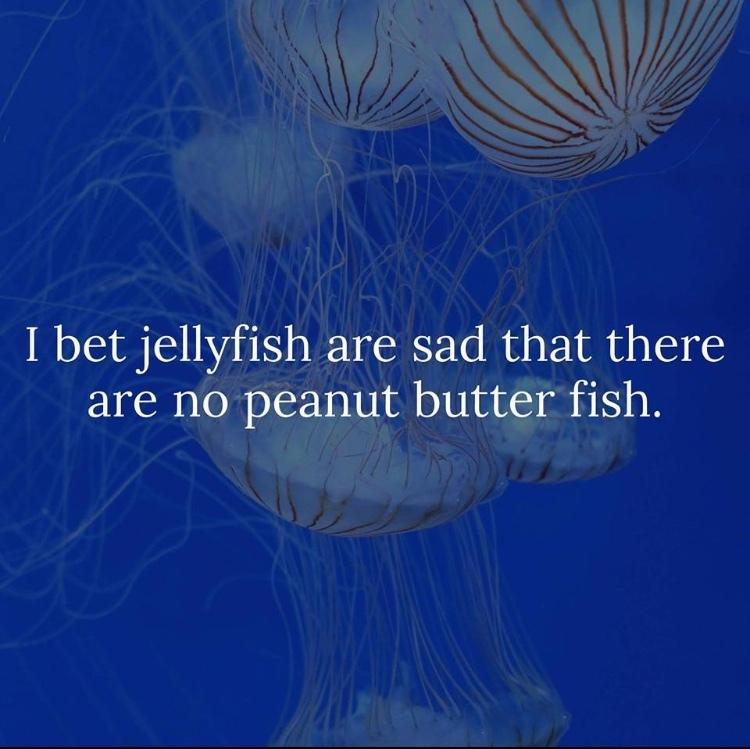 you jelly? - meme