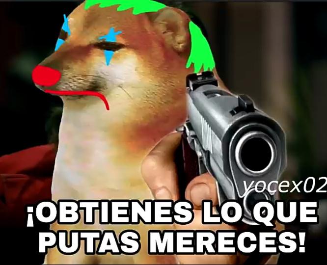 Pobre doge :( - meme