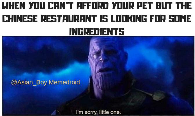 HoyHoyHoy - meme