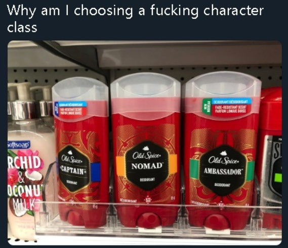 Why am I choosing a fucking character class? - meme