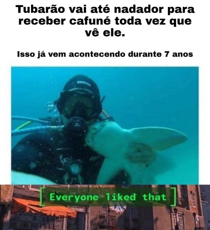 Titu - meme