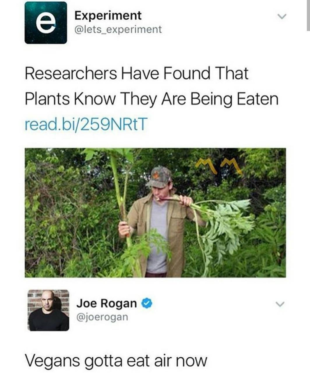 You're move vegans - meme