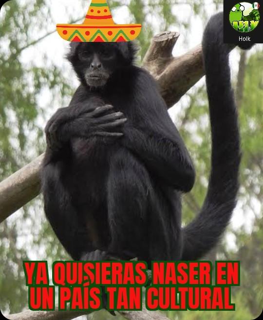 Mexichango - meme