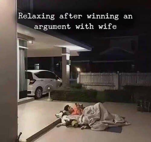 Puppy cuddles is always a solid win - meme