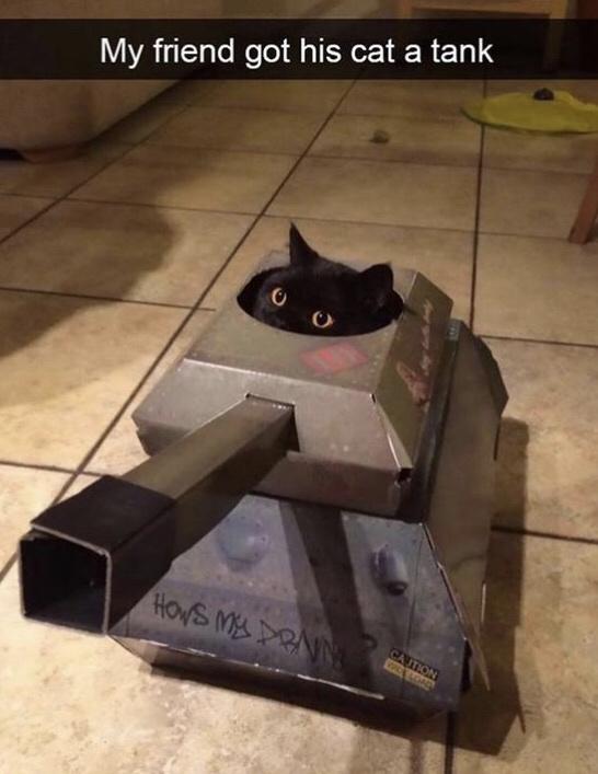 HES ARMED - meme