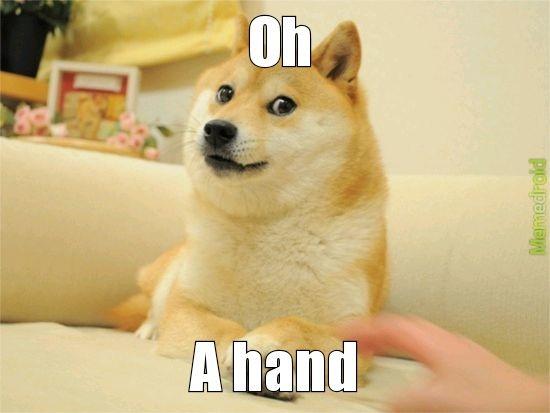 Doge loves you - meme