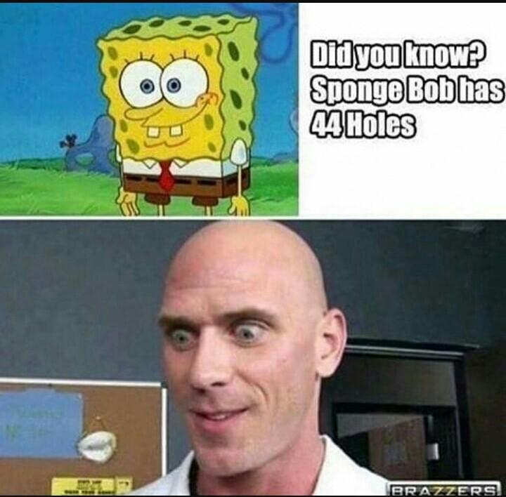"""""""Voce sabia? o Bob esponja tem 44 buracos"""" - meme"""