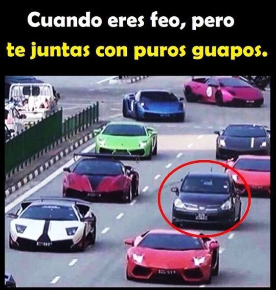 autos - meme