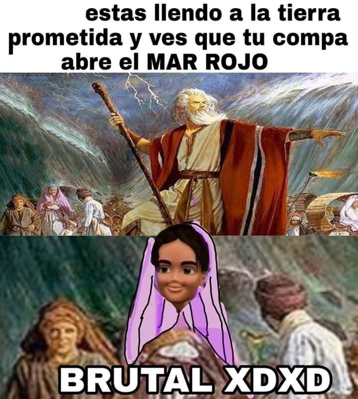 Brutal xdxd - meme