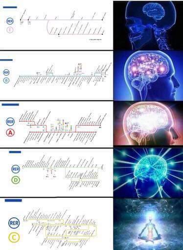 Chauud - meme