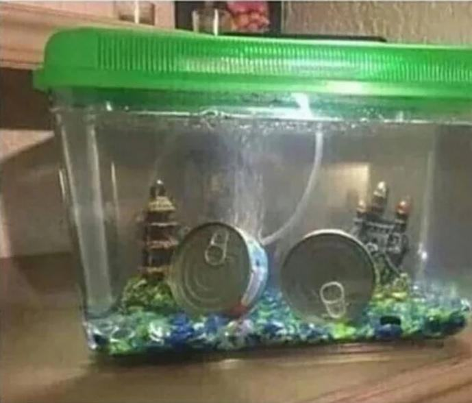 Got tired of my goldfish always dying - meme