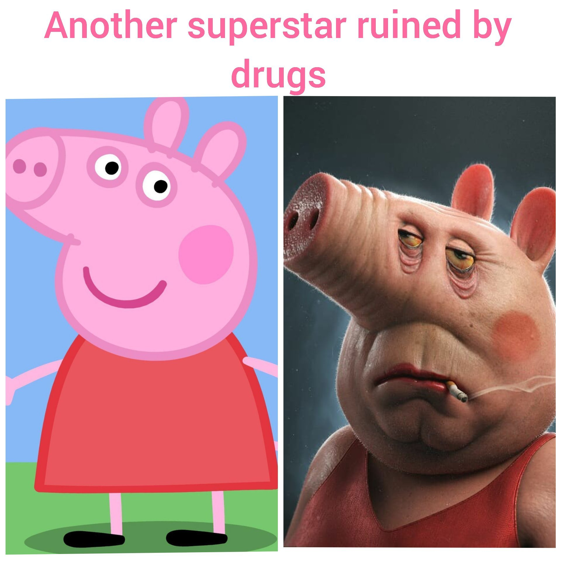 Peppa pig loves the D - meme
