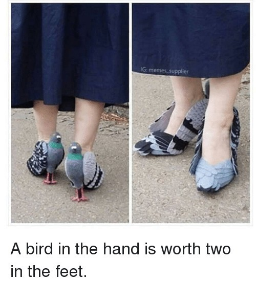 I'm so in dove with these shoes - meme