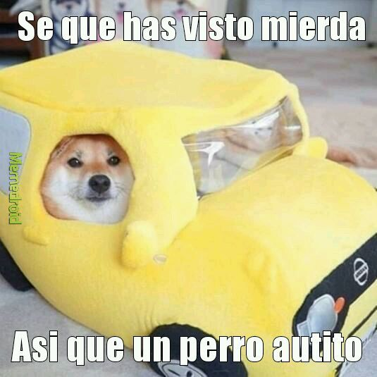 Autito - meme