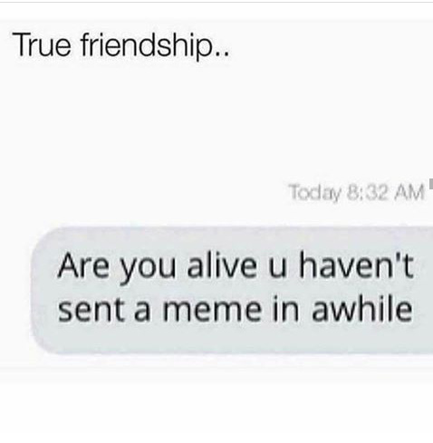 A friend like that cant be replaced - meme