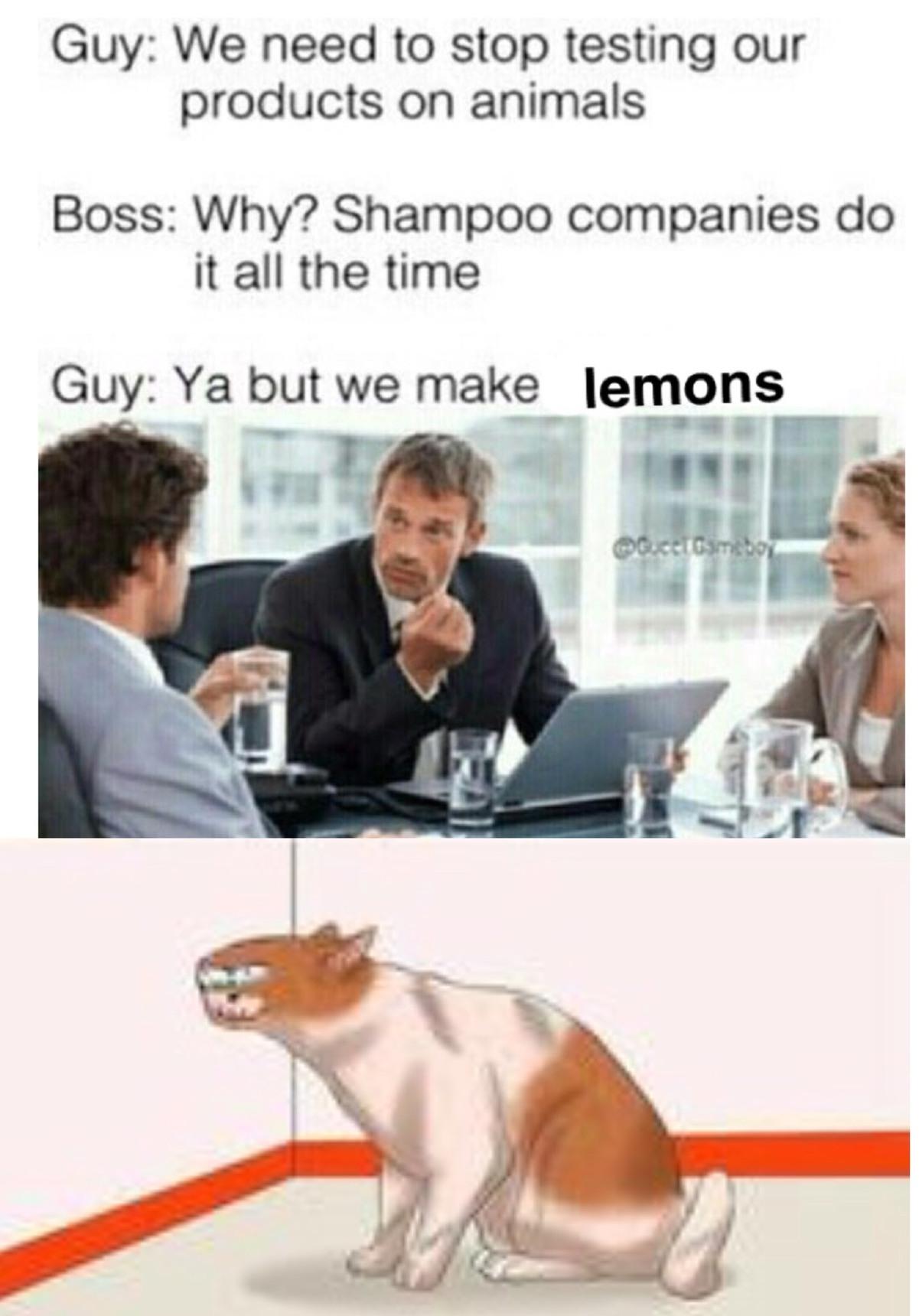 lulio - meme