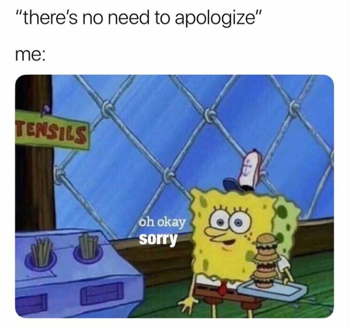 Idk how to not say sorry a bunch of times.....help plz - meme