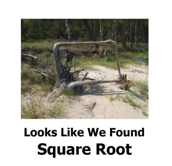 You can call me Root root root root root root - meme