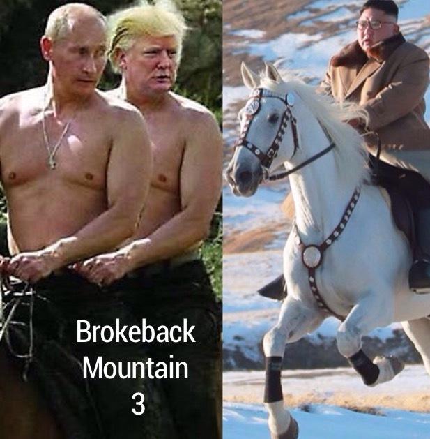 Brokeback Mountain 3 - meme