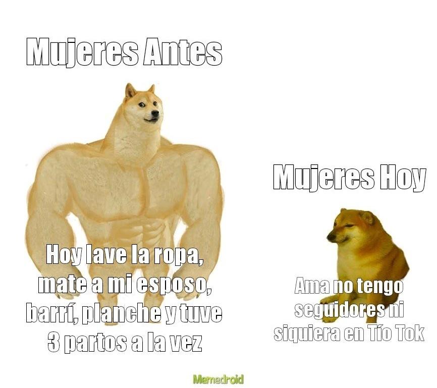 AhreProLaChabona - meme