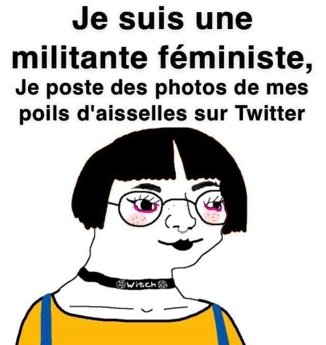Féministe extrémiste* - meme