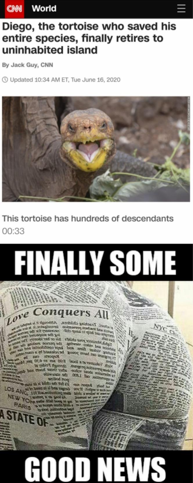 Love conquers all - meme