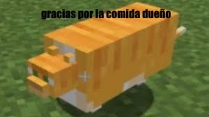 f por el gato - meme