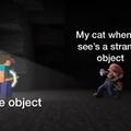 new meme for Memedroid