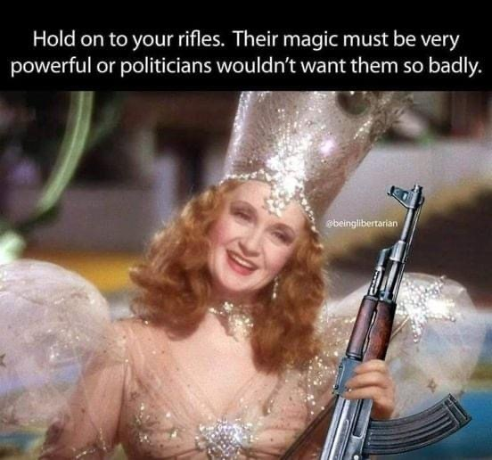 Ive taught my daughters to shoot ARs since they were 5, but grown ass people w/o a clue are afraid of them. - meme