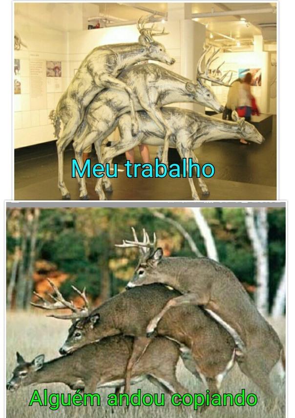 Título foi xerocar tbm essa foto dos São Paulinos - meme