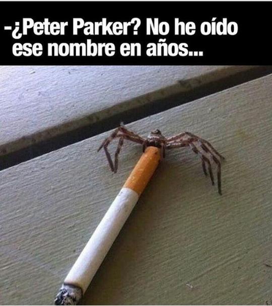 Peter parker - meme