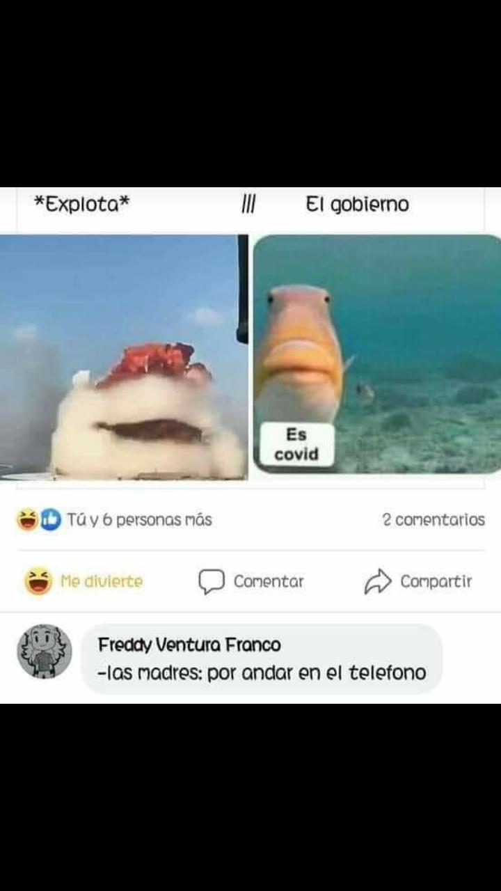 Agosto - meme