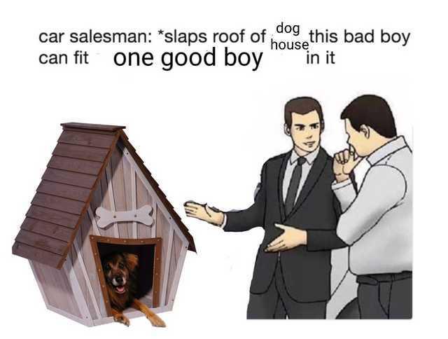 That's one good boy - meme