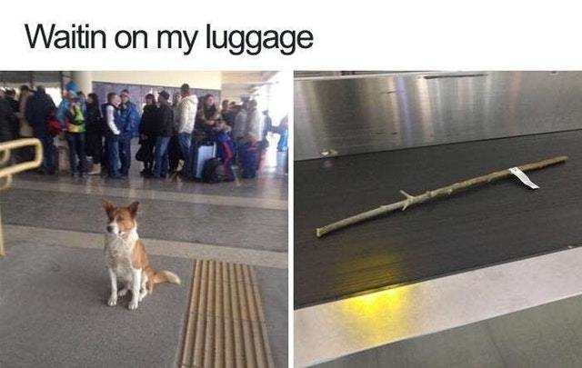 Waiting for his luggage - meme