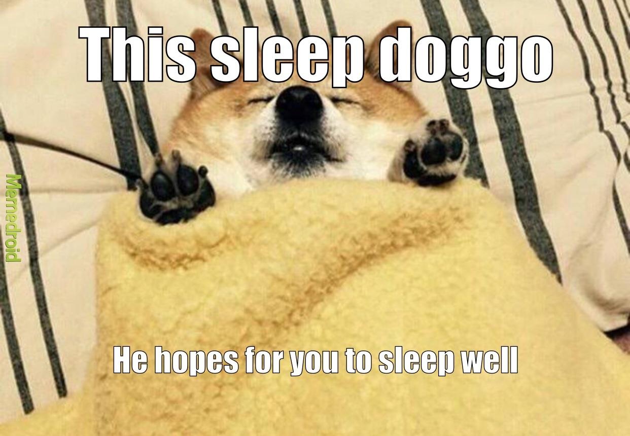 doggo is sleep - meme