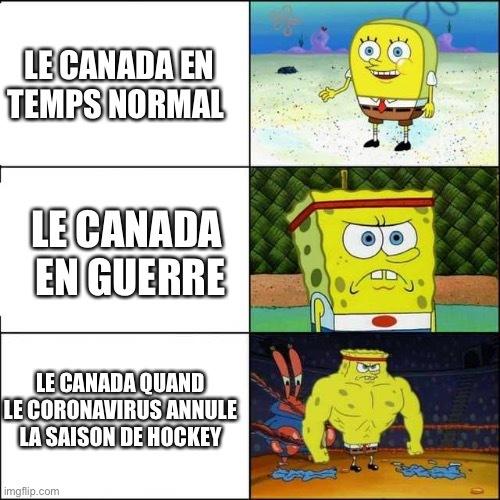 Faut pas toucher à leur hockey - meme