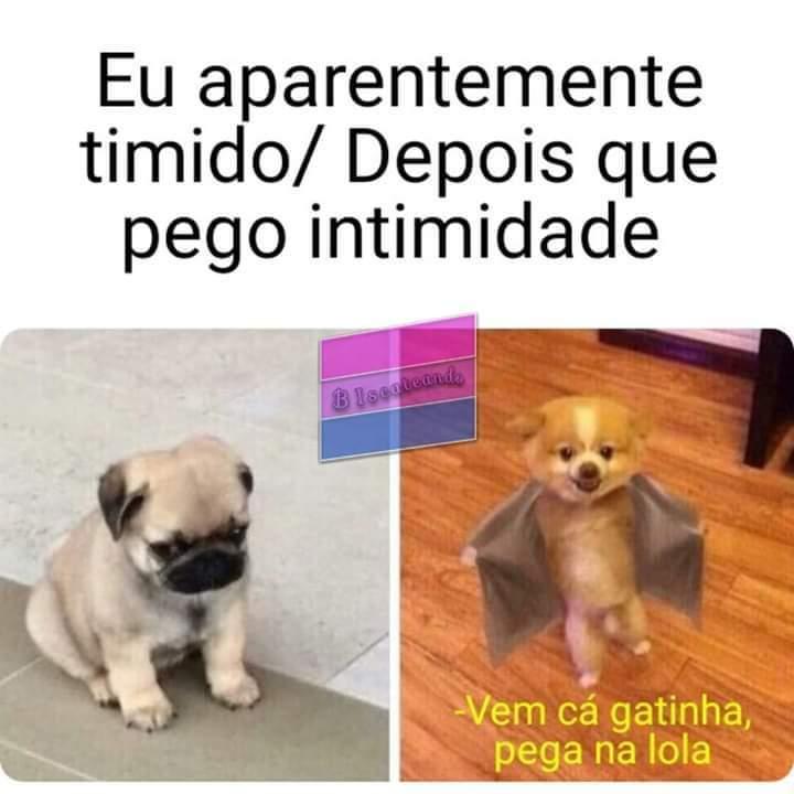 Eita poha! - meme