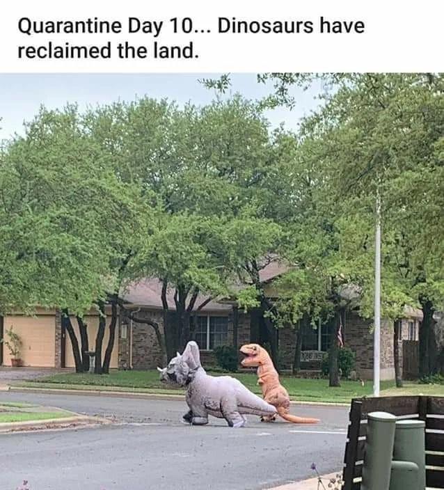 Jurassic park theme intensifies - meme