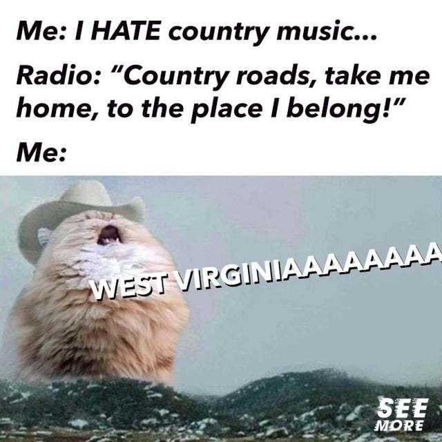 I hate country music - meme
