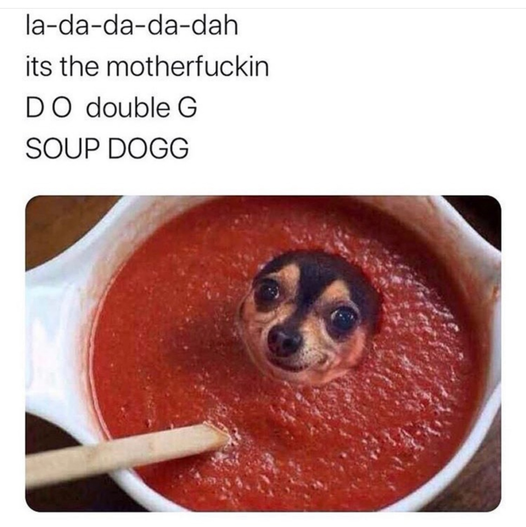 Soup dog mother FUCKER - meme